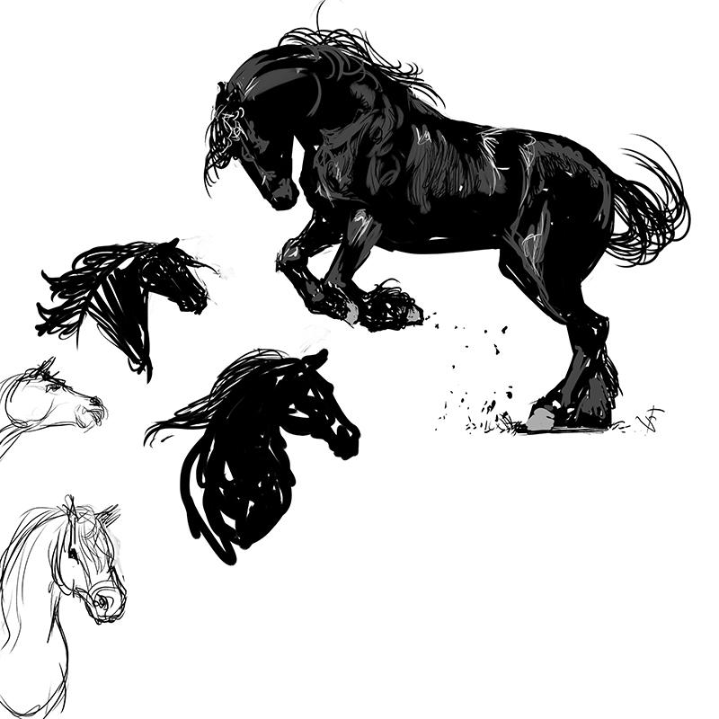 Horse-Sketch-fsmith.jpg
