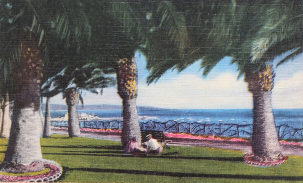 vintage postcard santa monica.jpg