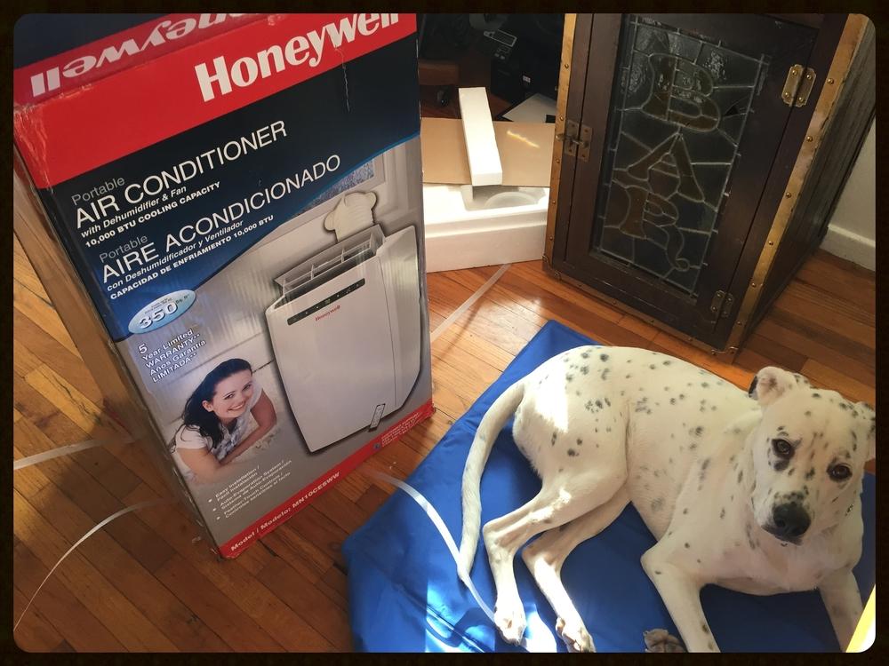 Chance, meet the Honeywell MN10CESWW.