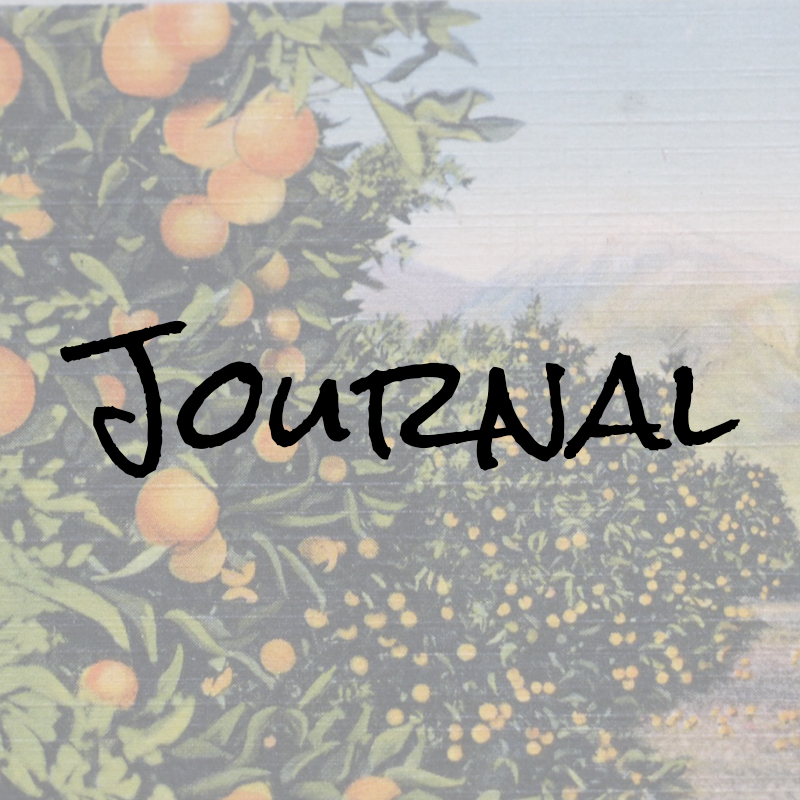 PS Journal Thumb.jpg