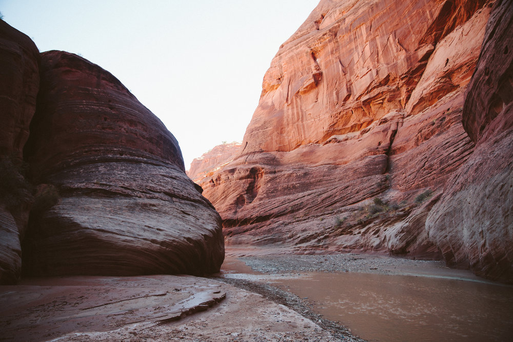 On a roadtrip through Utah, our original plan to visit the Grand Staircase Escalante was completely derailed when a flood surged through closing all the roads.  We re-wrote our plans and spontaneously ended up discovering Paria Canyon on the southern border of the state.