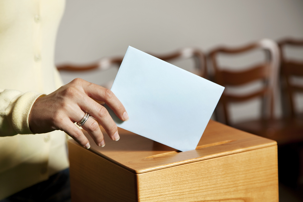 Board of Directors Elections   Voting Now Open!   Meet the Candidates and Vote Here!