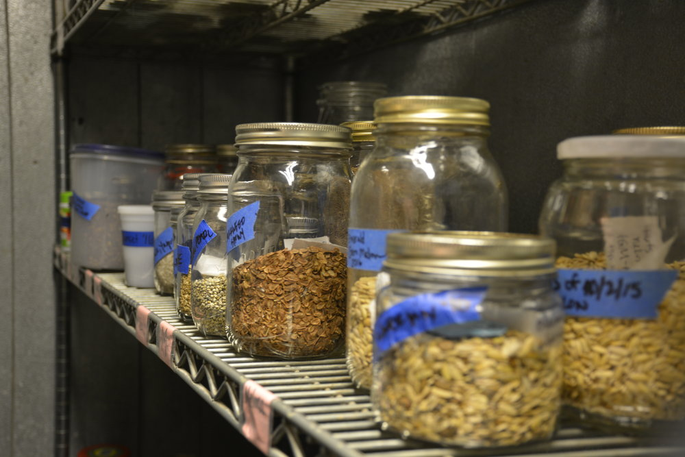 Refrigerated seed bank