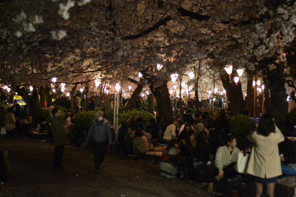 Tsuruma Park - nagoya.jpg