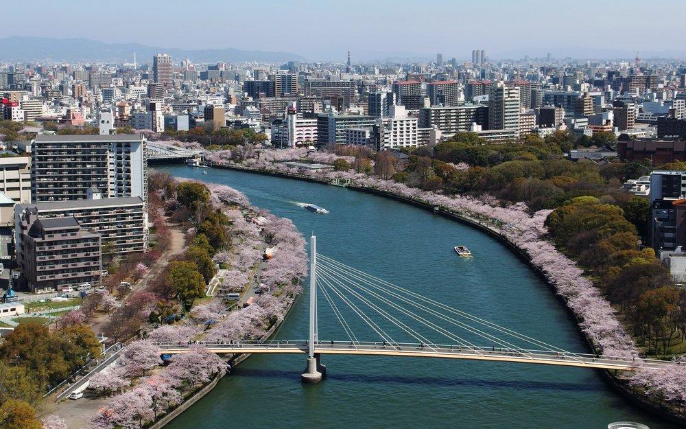 Sakuranomiya_Park_in_201504_001.jpg
