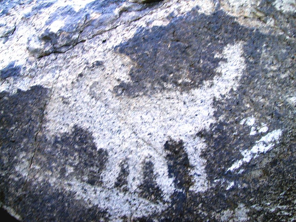 Creatures of the region were a favorite subject of early petroglyph artists. This is creature with a big head and long tail. Possibly a dog or maybe a lion. It could even be a bighorn sheep and the artist slipped when drawing the tail (sheep have very short tails).
