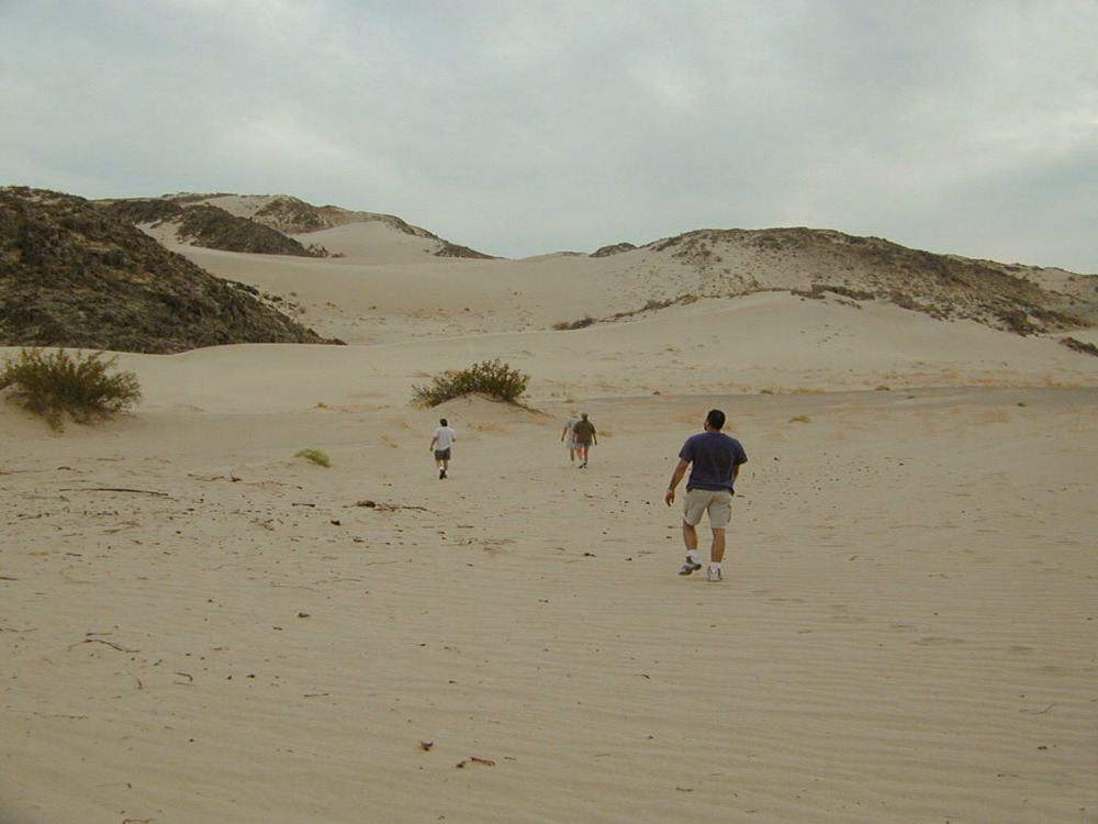 The Kelso dunes. The sand isn't really tan, it just looks that way in this photo. It was actually more of a light gray.