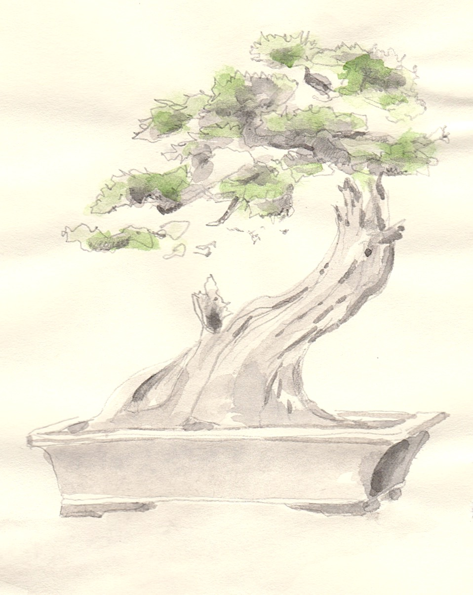 'Bonsai'  ink and graphite on paper. 20x13cm. 2018