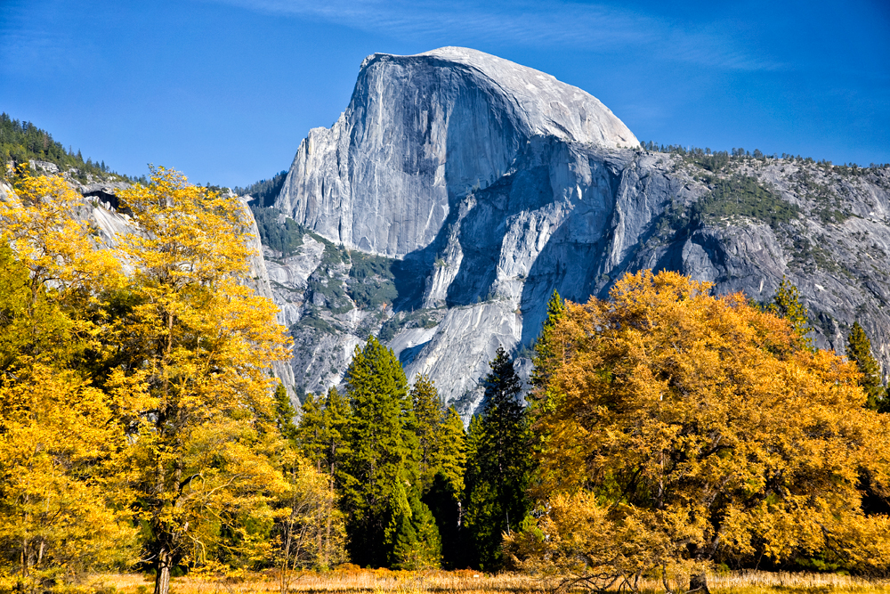 Half Dome in Autumn