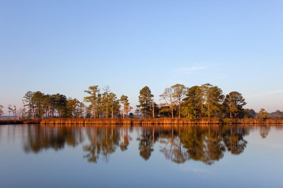 Blackwater Wildlife Refuge, October Morning