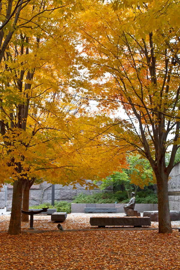 Roosevelt Memorial, November Morning