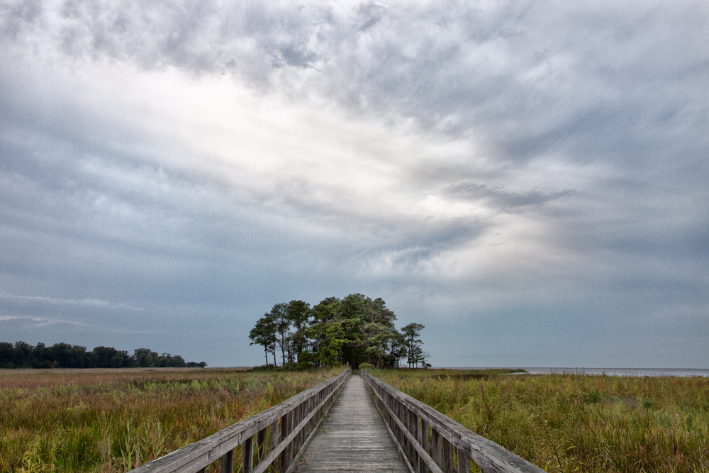 Eastern Neck Wildlife Refuge, September Morning