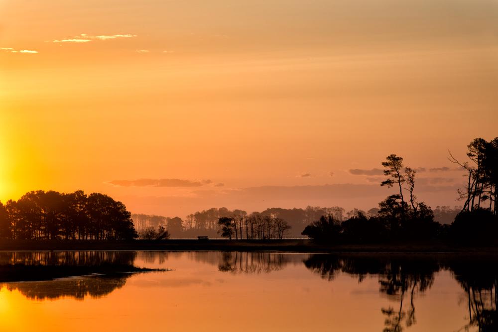 Assateague Island, May Morning