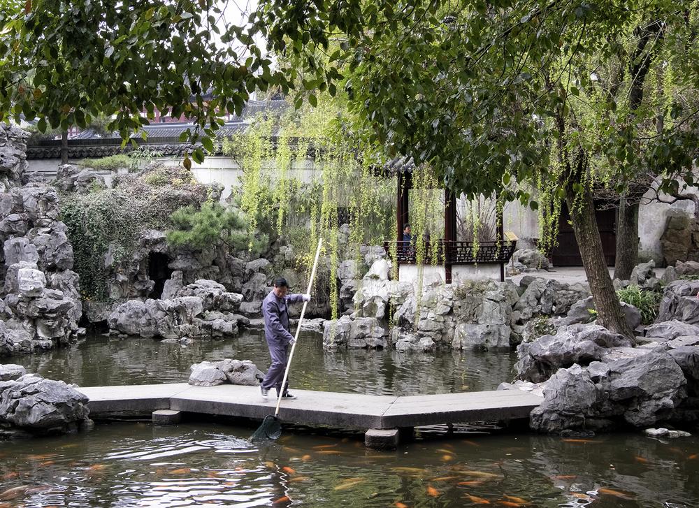 160317 Shanghai 160-1.jpg