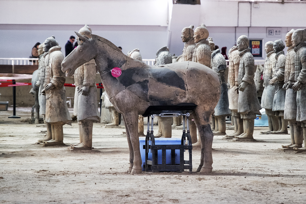 The Terracotta Warriors Hospital