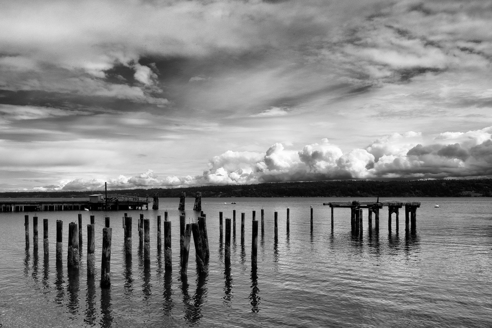 160709 Whidbey 130-1 bw.jpg