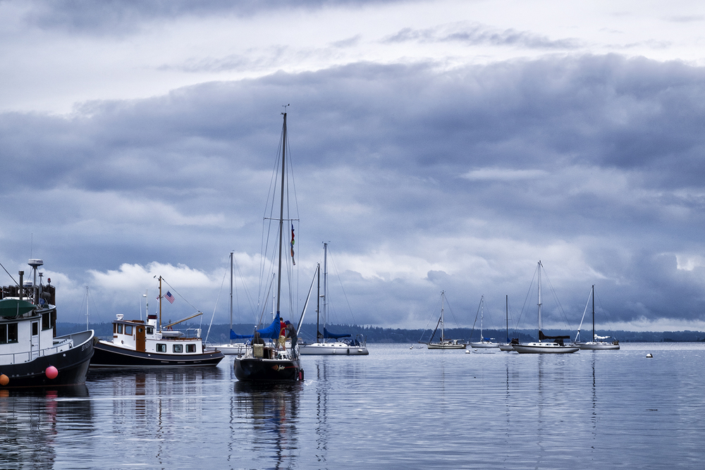 Langley Harbor, July Morning
