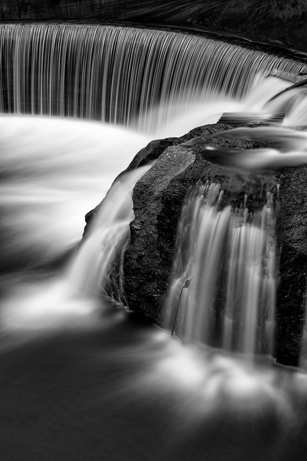 Jones Falls, May Morning, American Landscapes 2014
