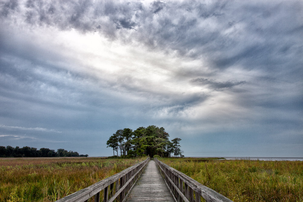 Eastern Neck Wildlife Refuge, September Morning, Stormy Weather 2015