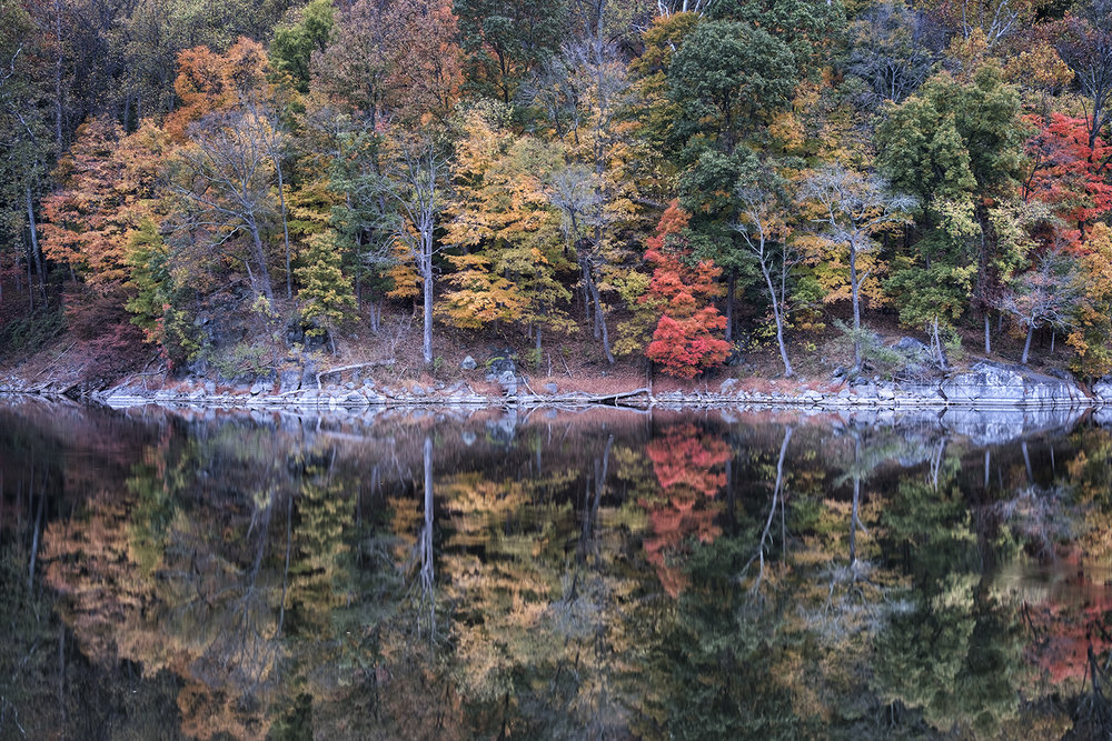 161102 Anglers Foliage 014-1.jpg