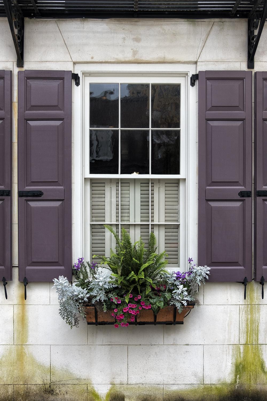170314 Charleston 089-1.jpg