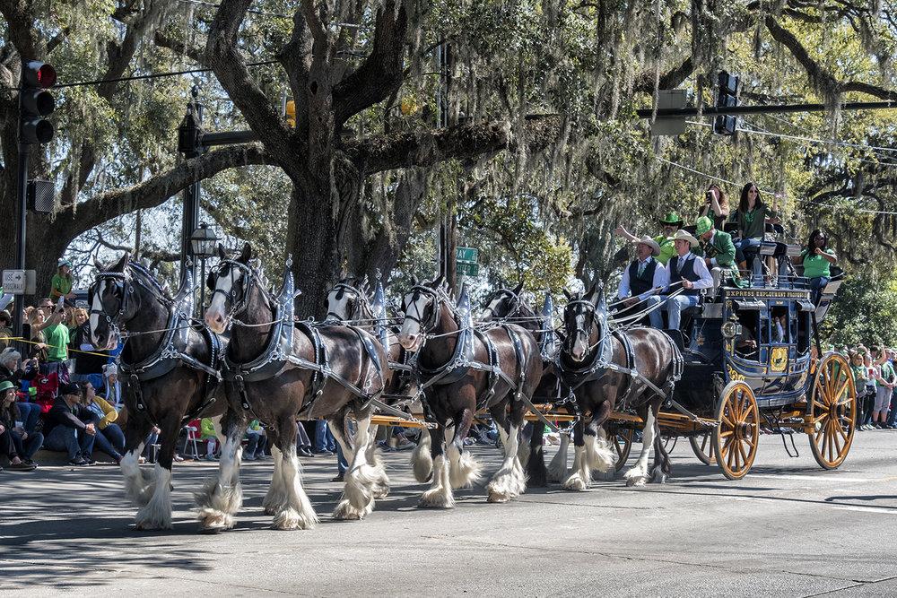 170317 Savannah 64-1.jpg