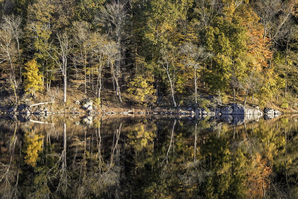171031 Canal Foliage 64-1.jpg