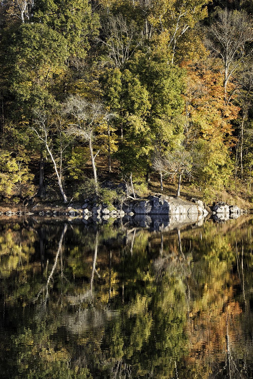 171031 Canal Foliage 67-1.jpg