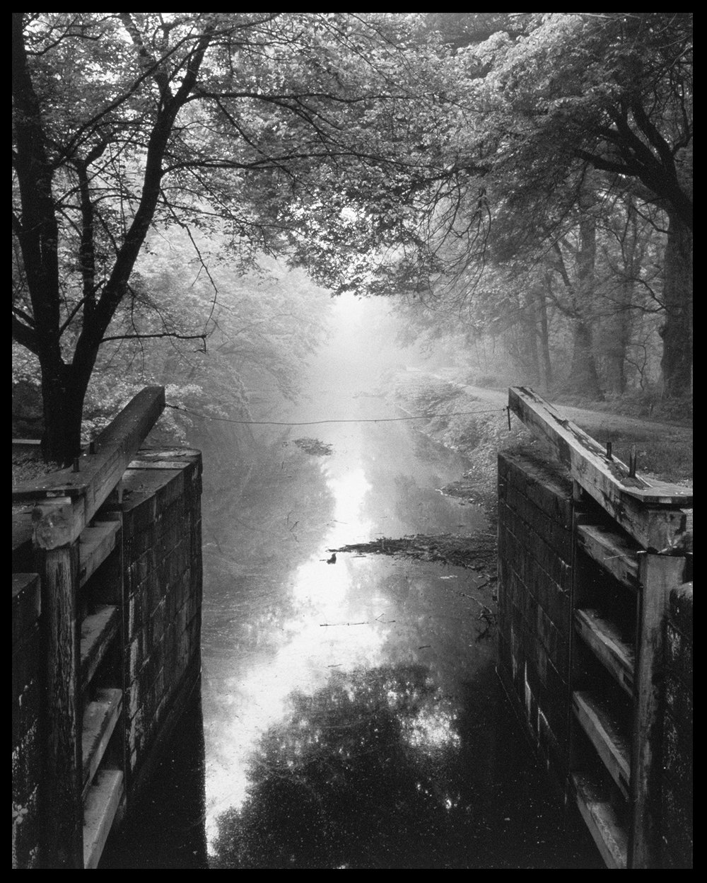 Lock 7 in Fog