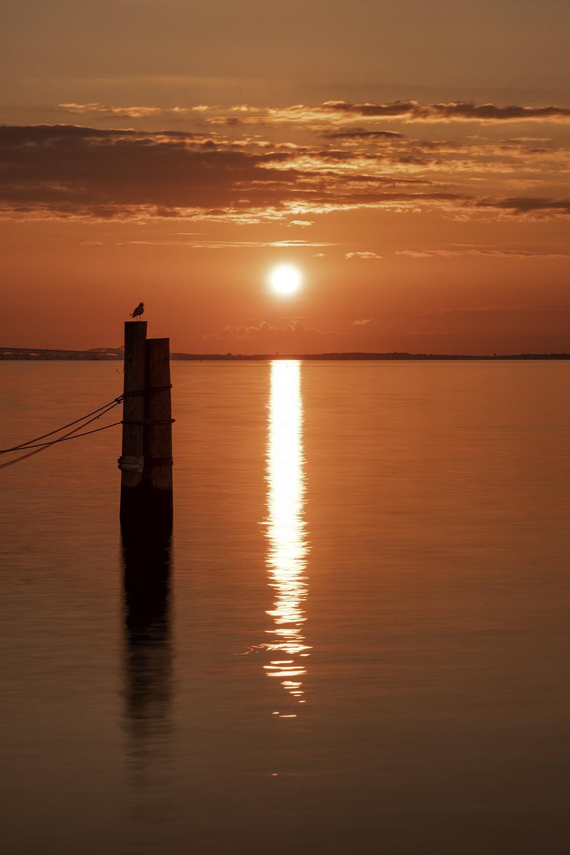 180903 Annapolis Sunrise 74-1.jpg