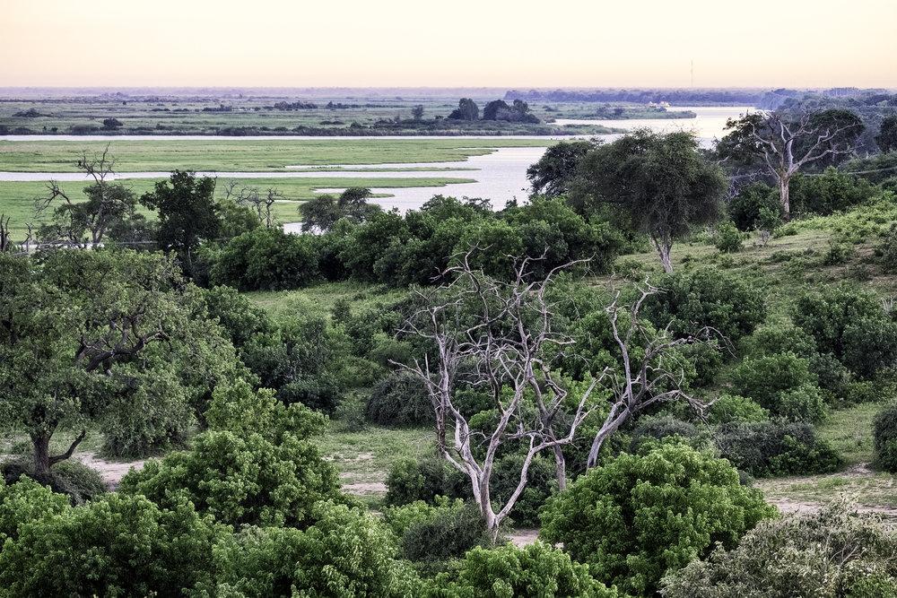 Chobe River, Botswana, February Morning