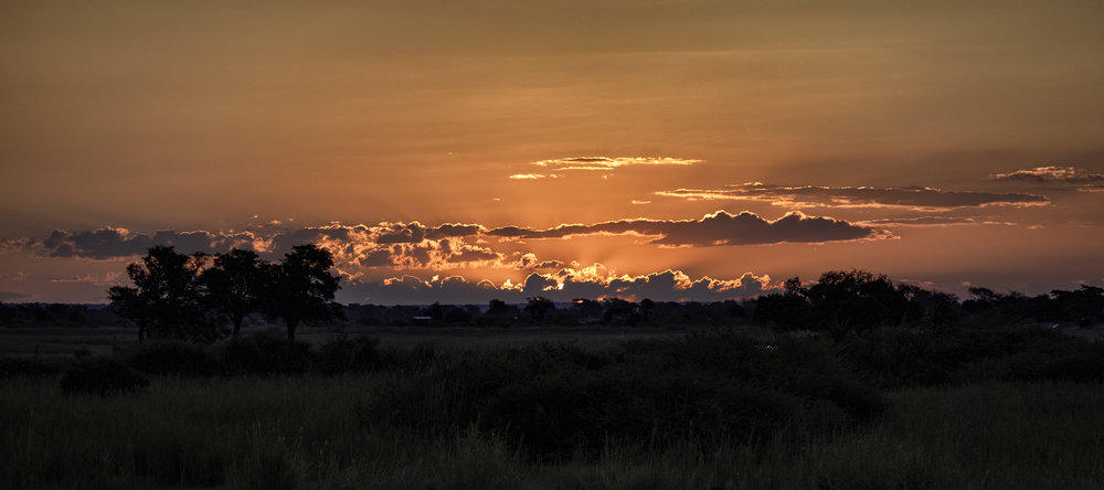 Chobe Park, Botswana, February Evening
