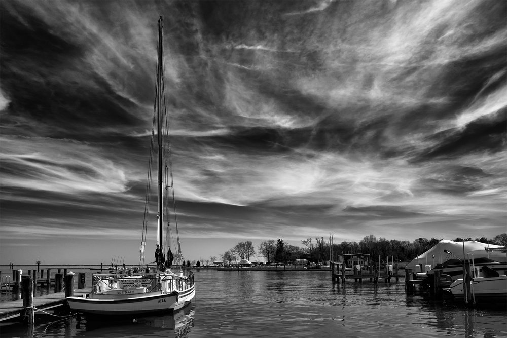 Annapolis Maritime Museum, March Afternoon