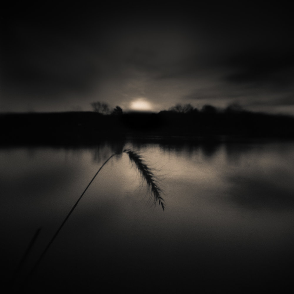 Grass and Sunrise, Nebraska, David McCleery, nebraska lake, nebraska landscape, pinhole photography