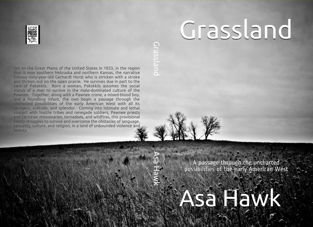 Book cover,  Grassland , a new novel by Asa Hawk. Published by A Slow Tempo Press (see page tab).