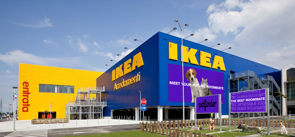 Ikea_DogPark_week14.jpg