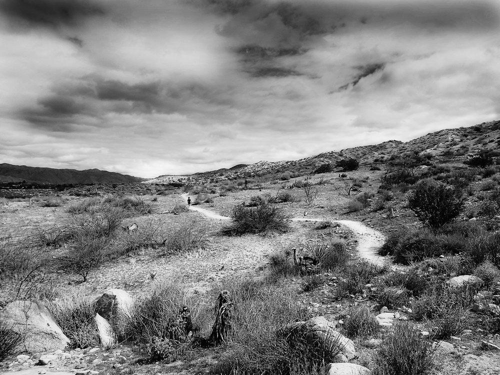 White Path on Morongo Canyon