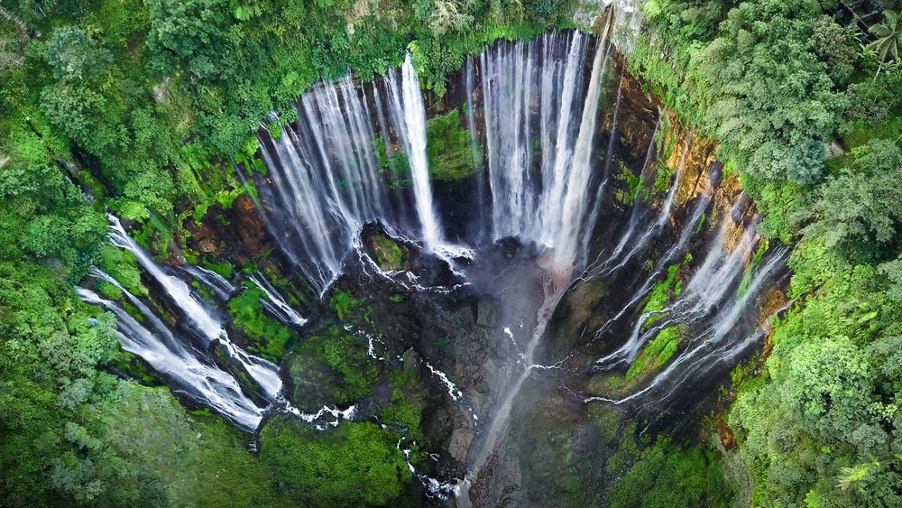 Epic Falls Indonesia Gregg Jaden.jpg