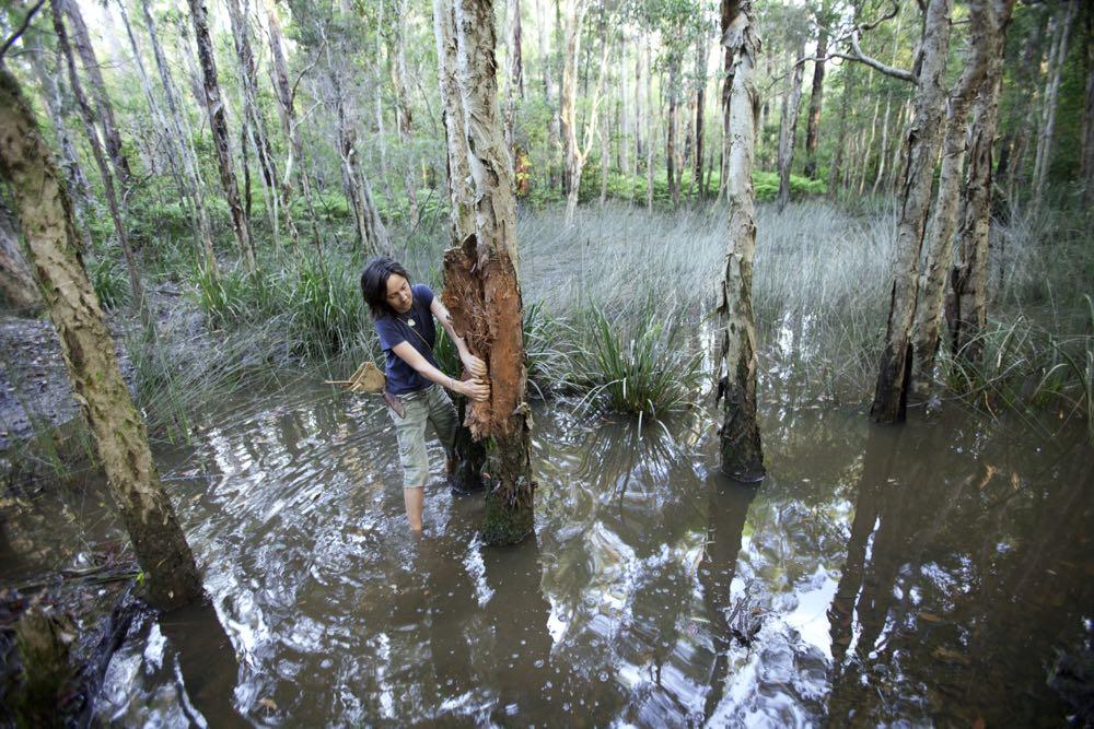 nature-rewilding-australian-geographic - 66.jpg