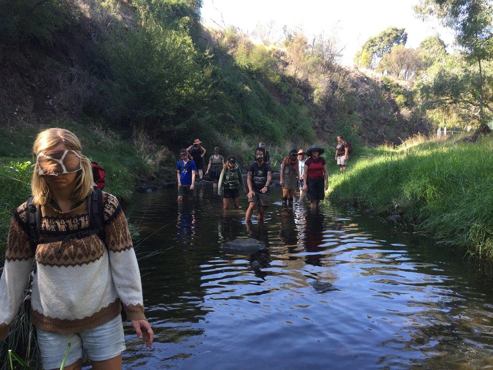 river stalk 2.jpg