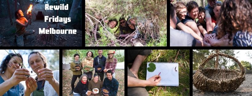 Rewild Friday FB Banner.jpg