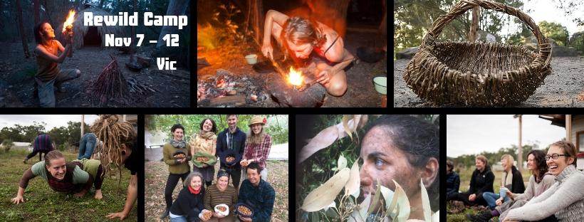 Camp Rewild_banner.jpg