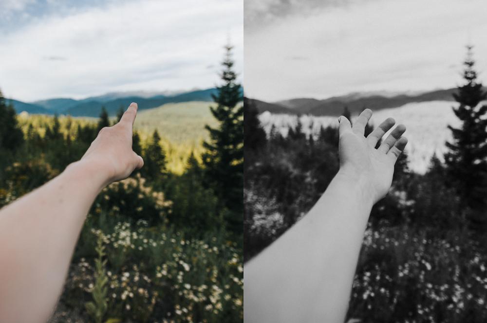 hands collage.jpg