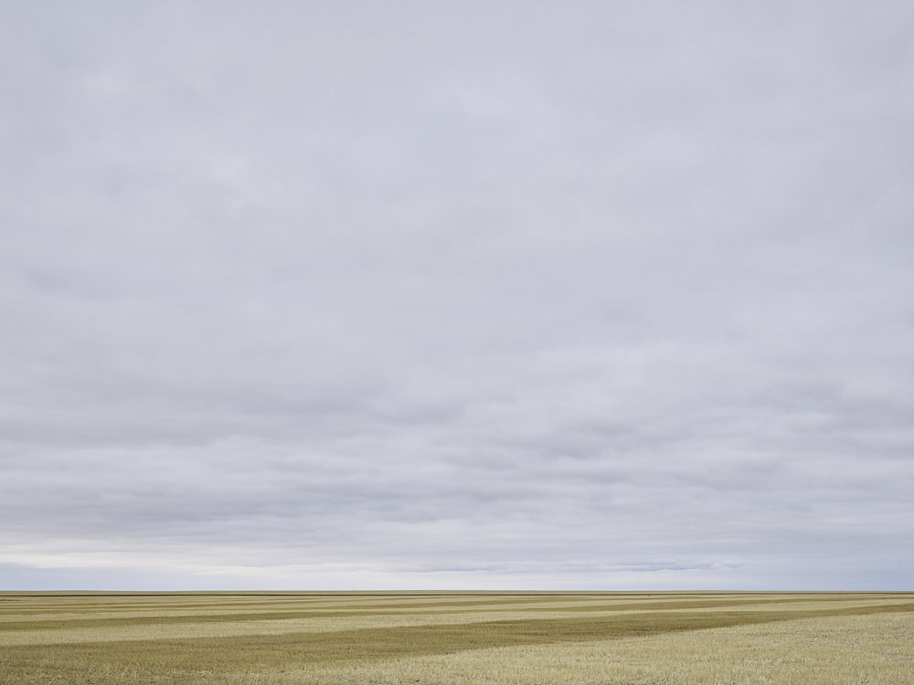 cleared 09,  South of Belle Plaine, Saskatchewan, Canada, 2017