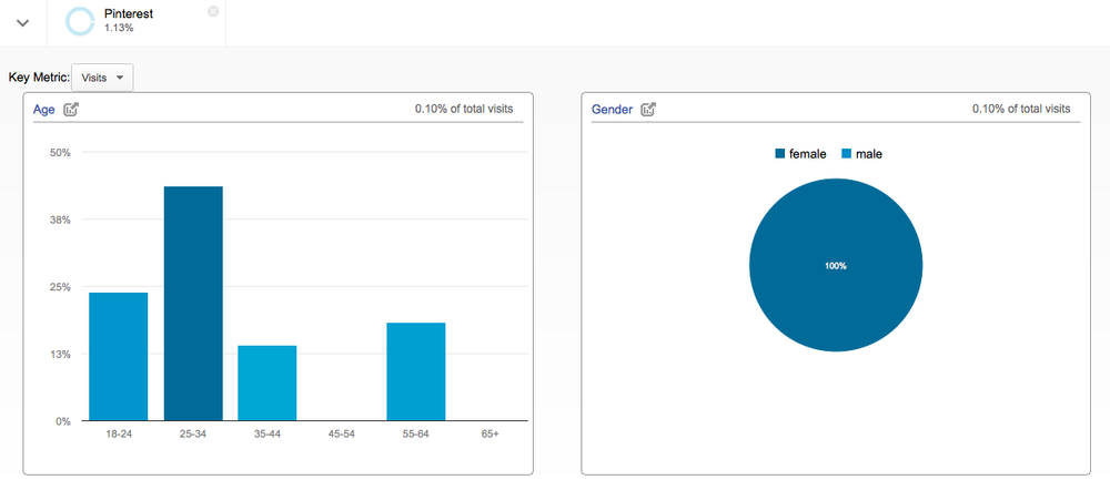 google analytics pinterest demographics