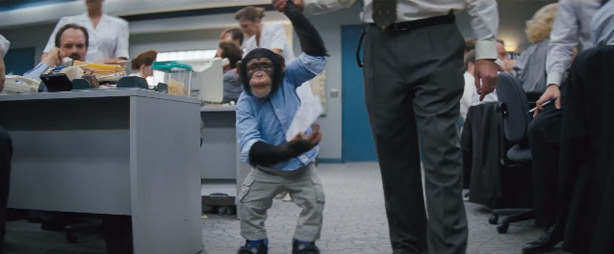 And, as promised, here's a picture of a monkey in cargo pants.
