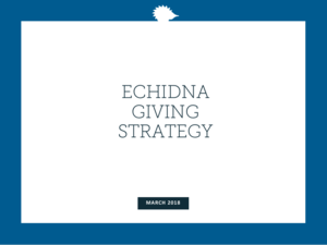 Click on image to download Echidna Giving's latest strategy