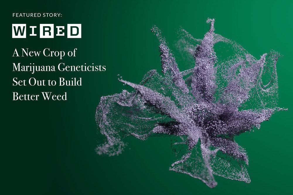 CBW_Wired.jpg