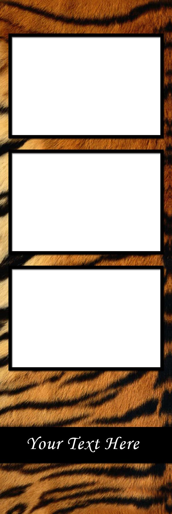 Texture_Tiger-V-6P.jpg