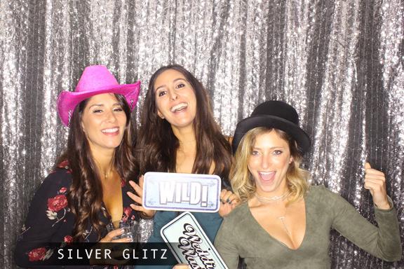 Silver Glitz.jpg
